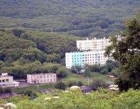 Дальневосточная академия
